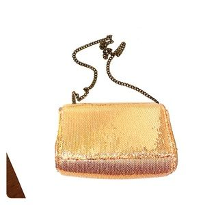 J Crew sequin box purse with metal chain